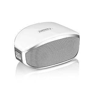 Zebronics BT013 Portable Bluetooth Speaker with Mic, USB ,MMC & FM Radio