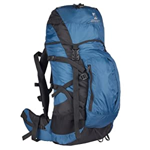 Wildcraft Savan D Hiking Backpacks-Blue