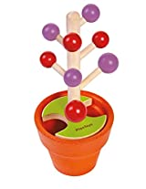 Plan Toys 4620 Pick A Berry Game