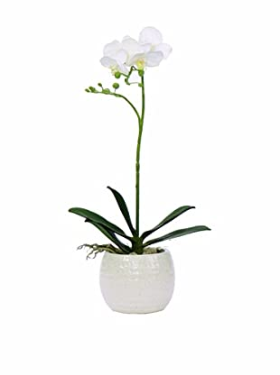 Lux-Art Silks Small Orchid In White Container (White)