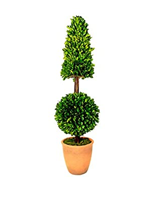 Creative Displays Preserved Boxwood Cone & Ball Topiary, Green