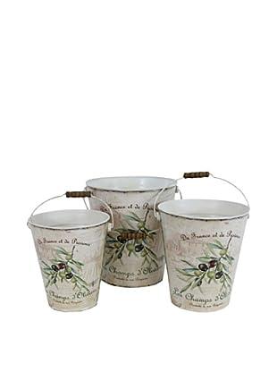 Set of 3 Olives Planters