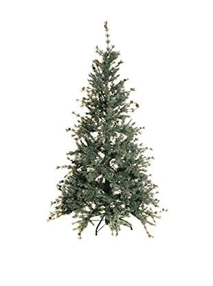Evergreens Árbol De Navidad Colorado Verde