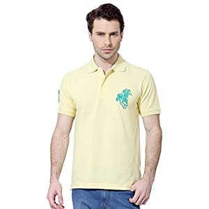 Peter England Men's Polo (12921_Yellow_M)