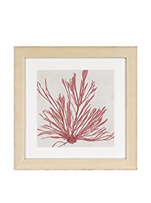 Surya Coral Leaf Pressed II Wall Décor, Multi, 24