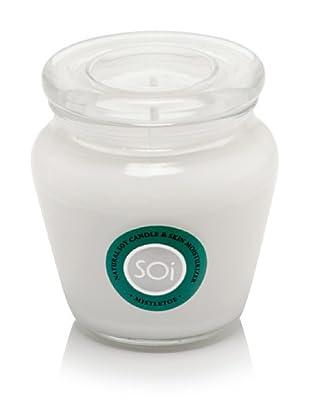 The Soi Co. 16-Oz. Mistletoe Keepsake Candle