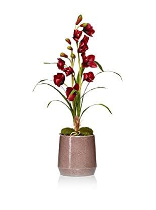 Laura Ashley Faux Orchid in Ceramic Container (Red)