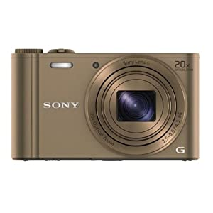Sony Cyber-shot DSC-WX300/TCE32 18.2MP Point-and-Shoot Digital Camera (Brown) with Camera Case