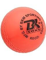 BKM Wind Cricket Ball for Tennis Garden Play Pack of 6 Orange