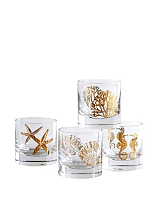 Shiraleah Set of 4 Assorted Coastal 8-oz. Bar Glasses (Gold)