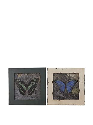 Set De 2 Cuadros Mariposas