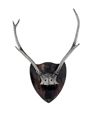 German Deer Antlers, Brown/Grey/Tan