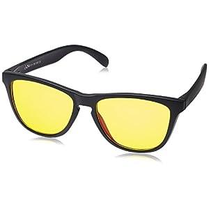 Joe Black Wayfarer Sunglasses (Matte Black)