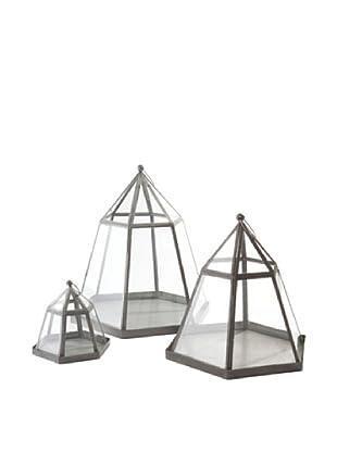 Napa Home & Garden Set of 3 Garden District Ameline Terrariums