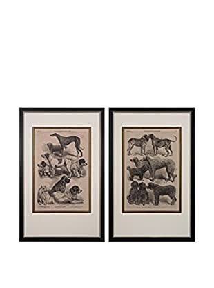 Set of 2 International Dog Show Fine Art Giclées, Black