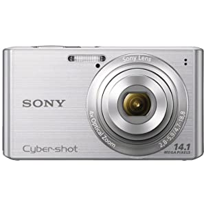 Sony Cyber-shot DSC-W610 14.1MP Point-and-Shoot Digital Camera (Silver) with Camera Case
