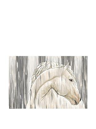 Maxwell Dickson White Horse Canvas Art