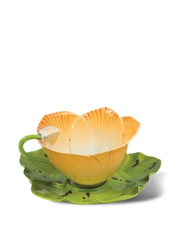 Mustardseed and Moonshine Orchid Tea Cup Orchid Sonoma, Orange/White