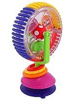 Sassy Wonder Wheel (Multi color)