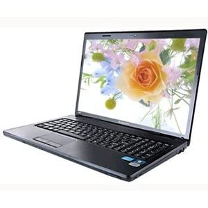 Lenovo Essential G Series G570 (59-315776) Laptop