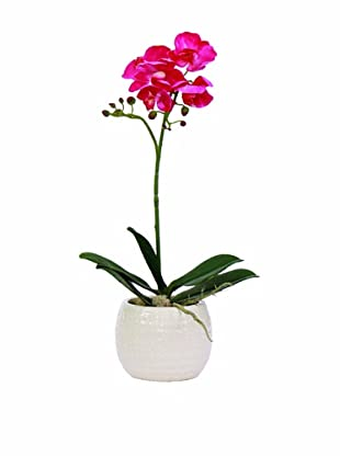 Lux-Art Silks Small Orchid In White Container (Fuchsia)