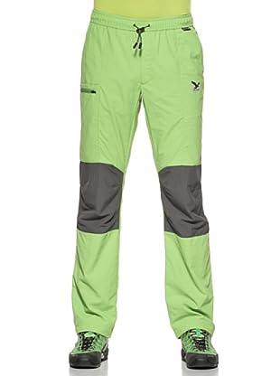 Salewa Ray Dry Pantalón (Verde)