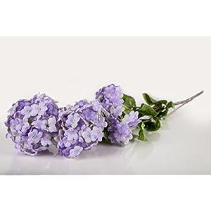 Casa De Regalos Purple Hyacinth