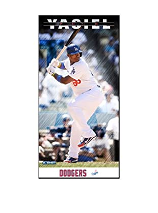 Steiner Sports Memorabilia Yasiel Puig Los Angeles Dodgers Player Profile Framed Photo