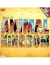 Best Of Animal Kingdom
