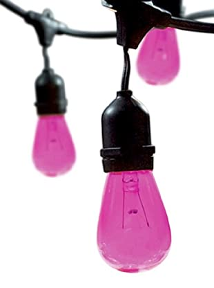 Bulbrite Celebrate Ceramic 15-Light Indoor/Outdoor String, Fuchsia