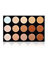 "SHANY Masterpiece 15 Color Foundation, Concealer, Camouflage Palette/Refill - ""TONED"""