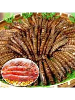 てんや&回転寿司から消えた!!日本人の胃袋を襲う「深刻エビ不足」