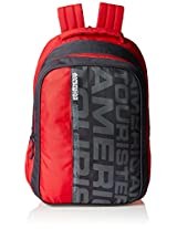 American Tourister Red Casual Backpack (AMT ALLER2016 BACKPACK03_8901836129373)