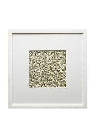 Star Creations Pearl Among Pong Shells & White Molding Shadowbox Art