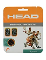 Head Perfect Power Squash Strings 1,20mm Black