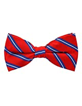 Scott Allan Men's Silk Twin Stripe Bow Tie - Red/Blue/White