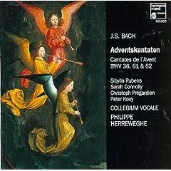 【クリックでお店のこの商品のページへ】Advent Cantatas [CD, Import, from US]