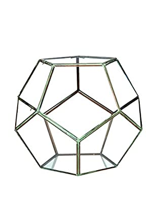 Sage & Co. Large Glass Geodesic Terrarium