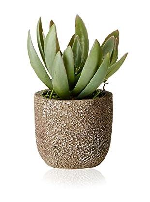 Lux-Art Silks Small Echeveria in Small Stone Pot, Green