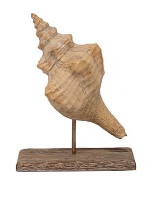 Palecek Shell On Driftwood, Conch