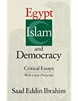 Egypt, Islam and Democracy: Critical Essays