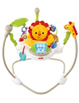 Fisher Price Jumperoo - Rainforest Friends