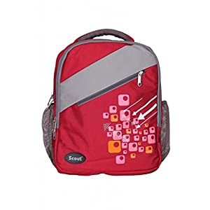 Scout Specious College Polyester 20 ltrs Dark Red Backpack
