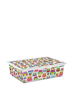 KIS Set Caja de Almacenamiento 6 Uds. C-Box Style L _ Tender Zoo Multicolor/Transparente