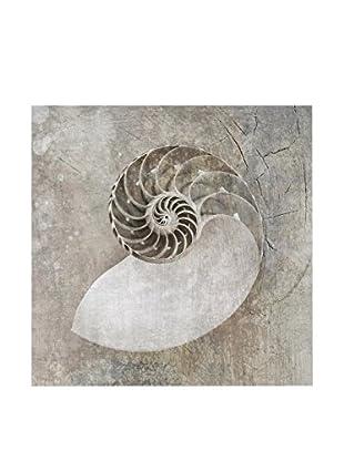 NOORMAL Leinwandbild Seashells 3