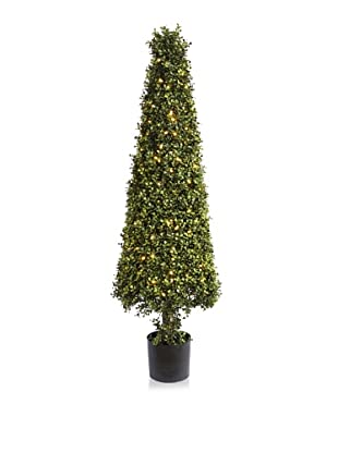 Winward Illuminated Boxwood Cone Topiary