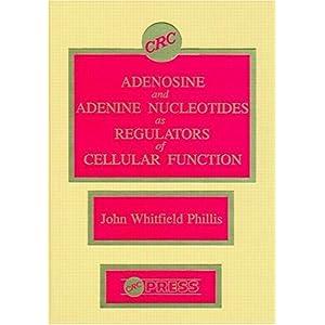 【クリックで詳細表示】Adenosine and Adenine Nucleotides As Regulators of Cellular Function: John W. Phillis: 洋書
