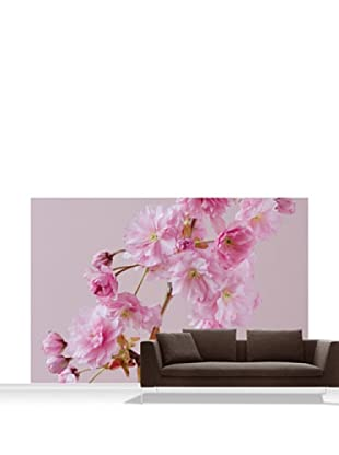Clive Nichols Photography The Flowers of Prunus Kanzan Mural, Standard, 12' x 8'