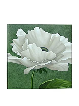John Zaccheo White Poppy Canvas Print