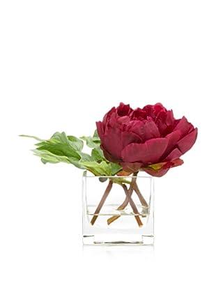 Winward Peony in Square Vase